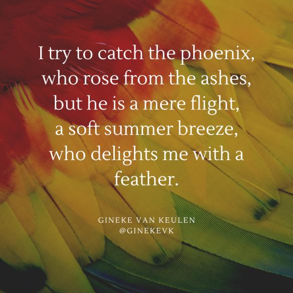 The phoenix catches me